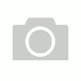 Warhammer Age of Sigmar: Stormcast Eternals Gryph-Hounds